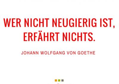 goethe-und-handpans-panfiction(14)